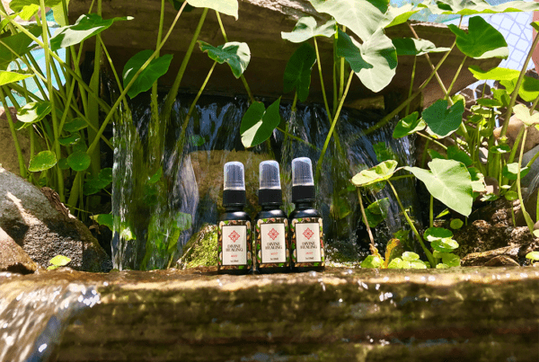 divine elements healing cbd mist spray image